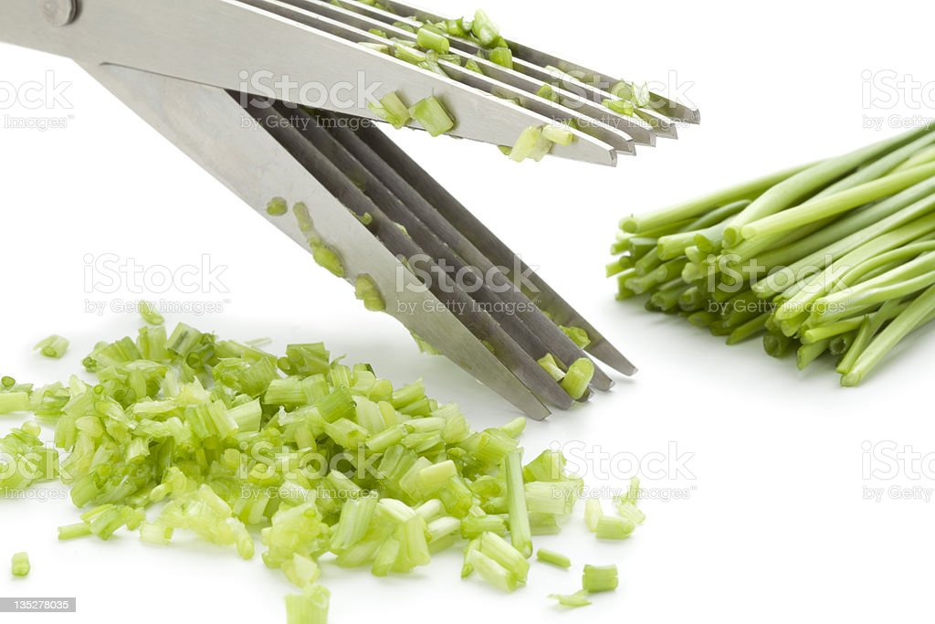 Herb scissors cutting chives royalty-free stock photo