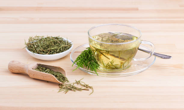 herb tea – Foto