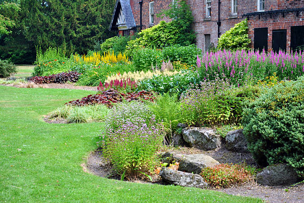 herbaceous border herbaceous border perennial stock pictures, royalty-free photos & images