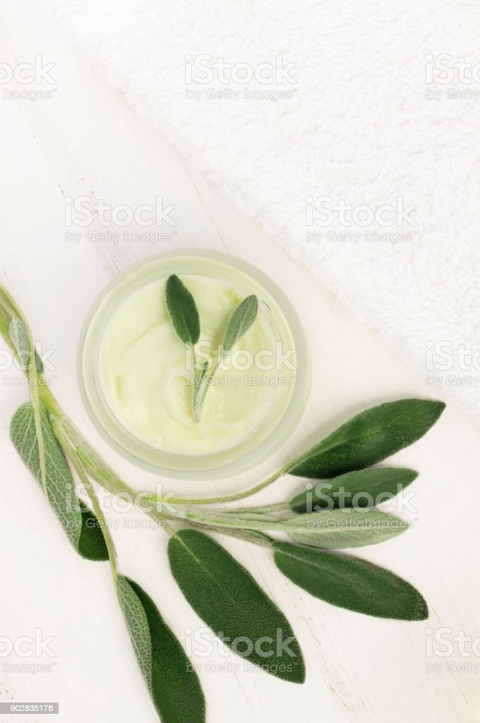 Herbal body and beauty care, spa cosmetics - jar of cream top view framed green Salvia leaves stock photo