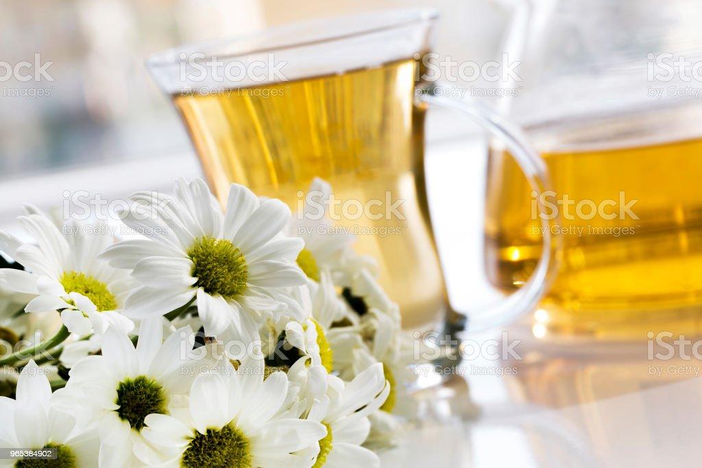 玻璃杯中的草本甘菊茶和新鮮甘菊草藥的玻璃茶壺 - 免版稅健保和醫療圖庫照片