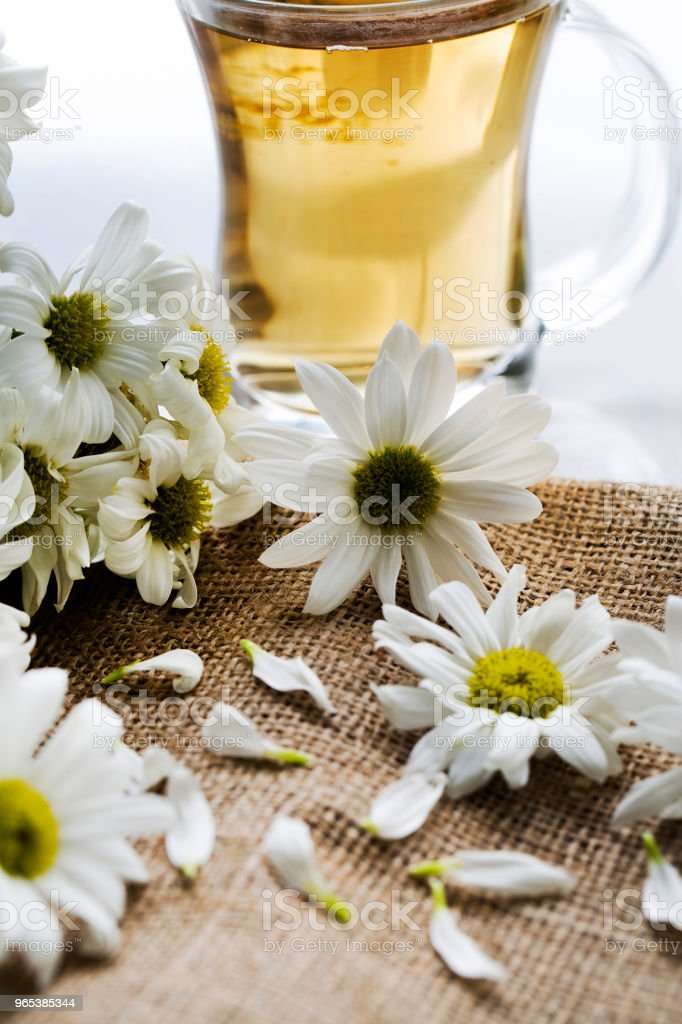 Herbal chamomile tea in a glass cup and glass teapot with fresh chamomile herbs royalty-free stock photo