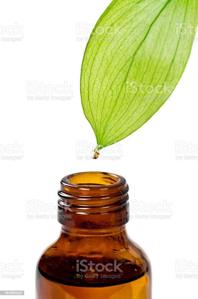 Herbal Essence royalty-free stock photo