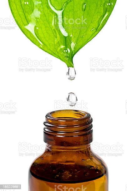 Photo of Herbal Essence