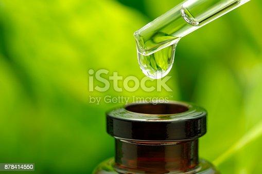 istock Herbal essence 878414550