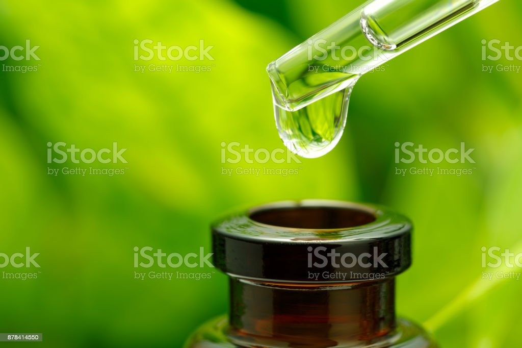 Fondo de hierbas - foto de stock