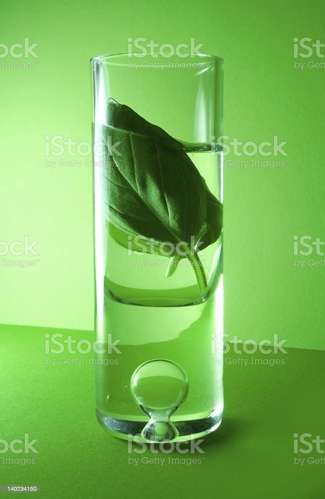 Herbal essences stock photo