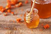 istock Herbal honey in jar with dipper, honeycomb, bee pollen granules, calendula flowers on grey background. 1176630233