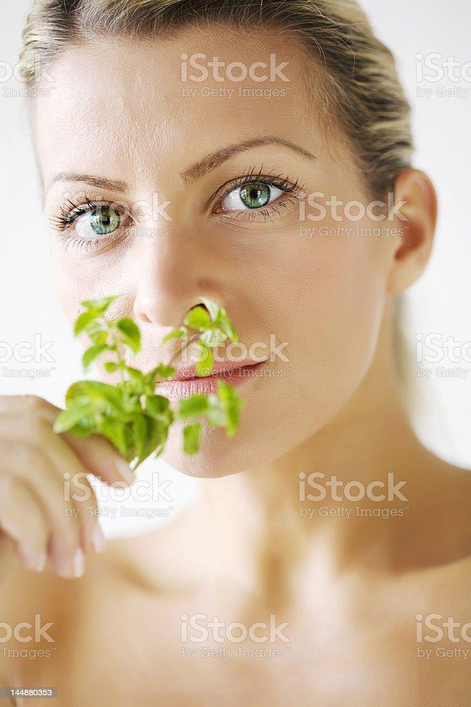 herbal ingredients royalty-free stock photo
