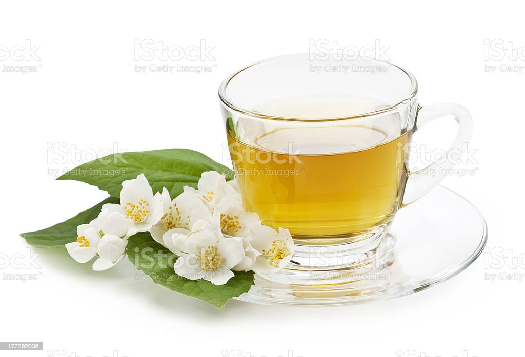 Herbal jasmine tea stock photo