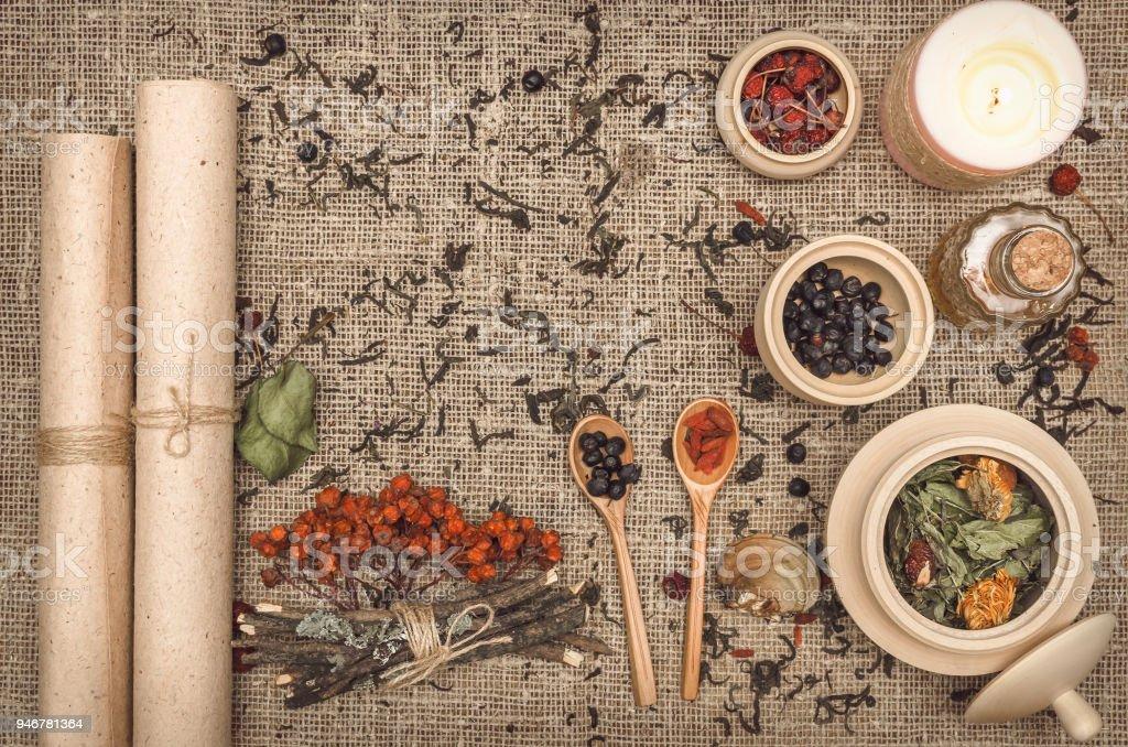 Herbal medicine concept. Alternative medicine. Dry wild rowan berry...