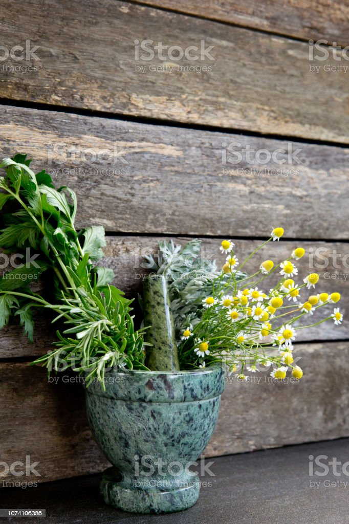 Herbal medicine - fresh bunches of herbs in green marble mortar and...