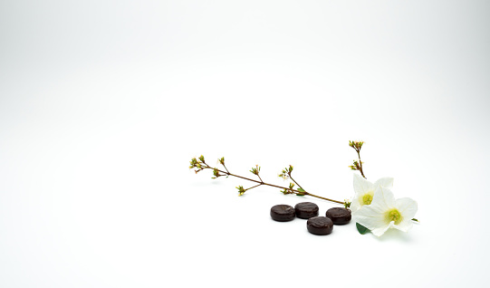 istock Herbal medicine lozenges for relief cough put near white flower and branch on white background with copy space. 837062328