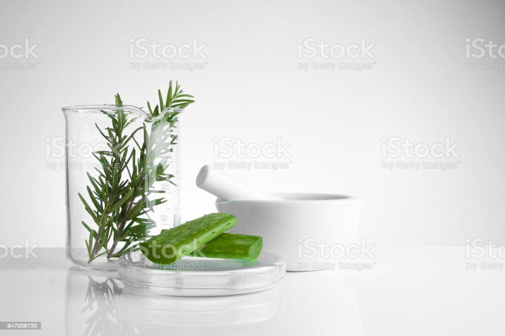 herbal medicine natural organic and scientific glassware, Research and development concept. stock photo