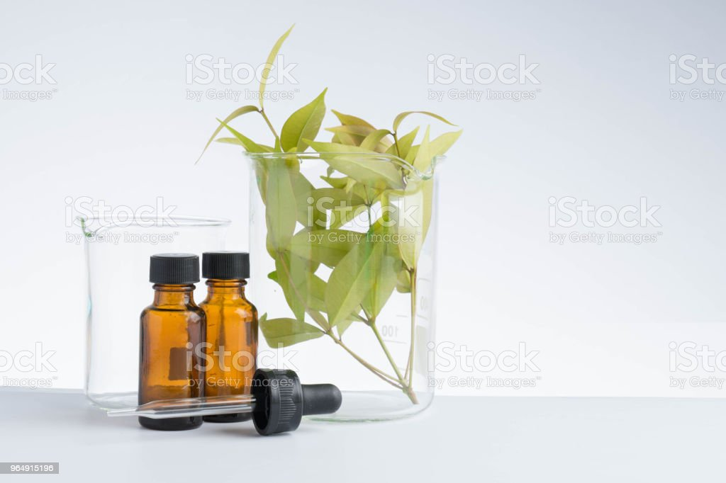 herbal medicine natural organic and scientific glassware research royalty-free stock photo