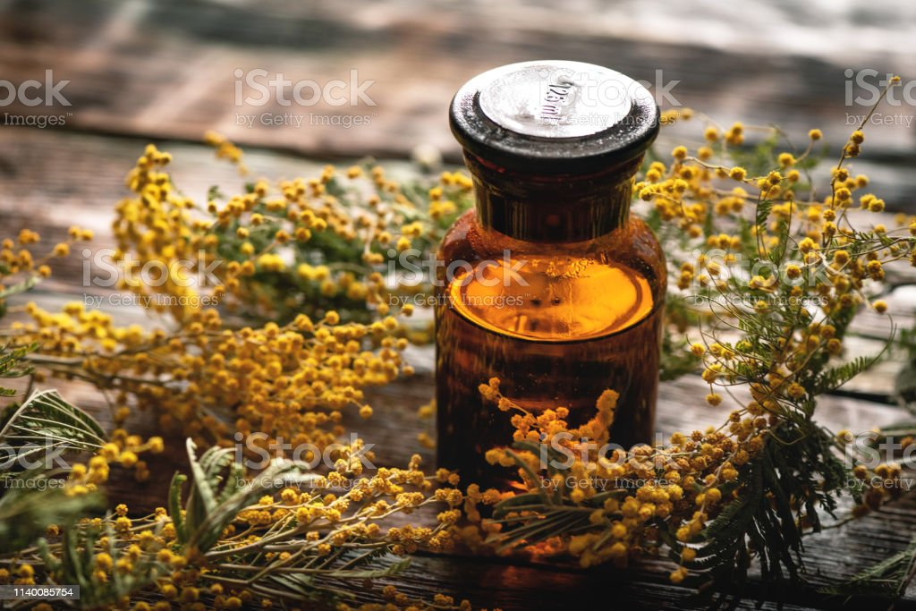 Mimosa flower essential oil bottle on a wooden board background....