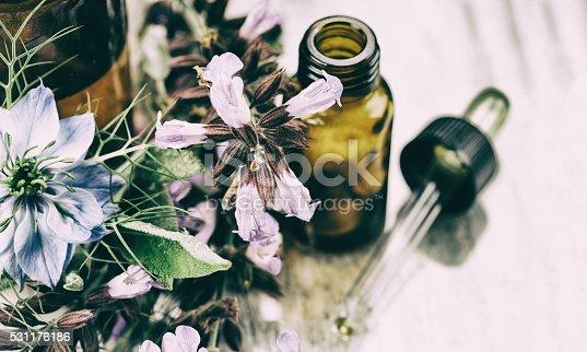 istock Herbal medicine 531176186