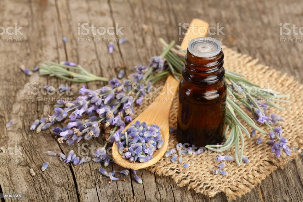 Herbal oil and lavender flowers on old wooden background stock photo