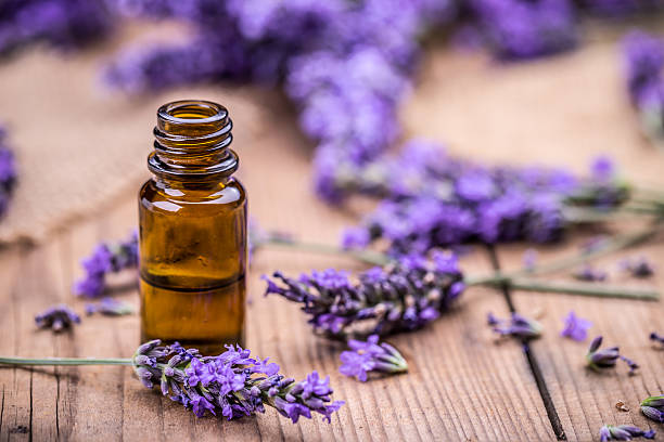 herbal oil and lavender flowers - naturopathy stock photos and pictures