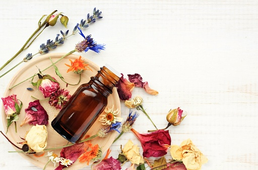 Various bright medicinal herb plant on wooden plate, essential oil extract bottle, top view.