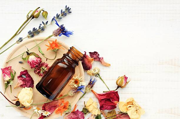 herbal pharmacy.botanical cosmetic ingredients, aromatherapy background. - aromaterapi stok fotoğraflar ve resimler