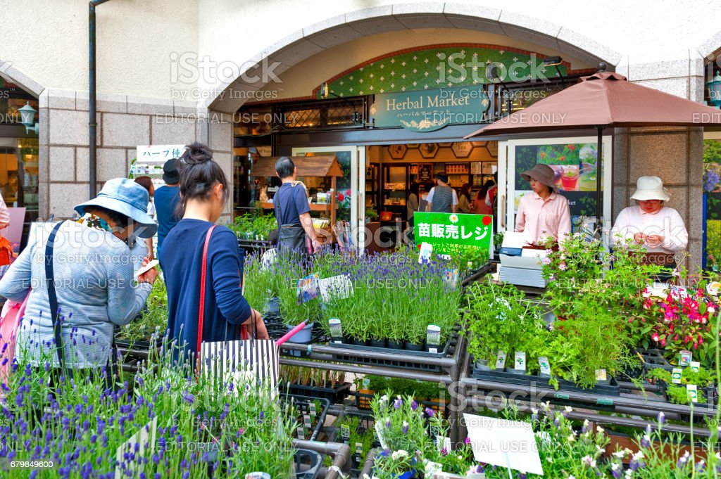 Herbal Plants Sold At Herbal Market Nunobiki Herb Garden On Mount Rokko In  Kobe Japan Stock Photo & More Pictures of Backgrounds