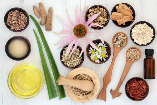 Soins de la peau à base de plantes avec des ingrédients de guérison - Photo