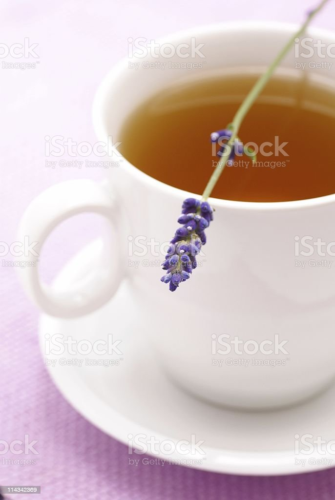Herbal tea and lavender royalty-free stock photo