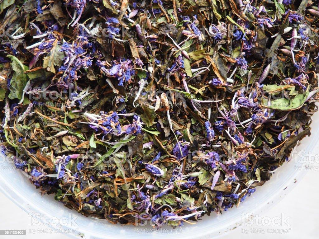 herbal tea close up zbiór zdjęć royalty-free
