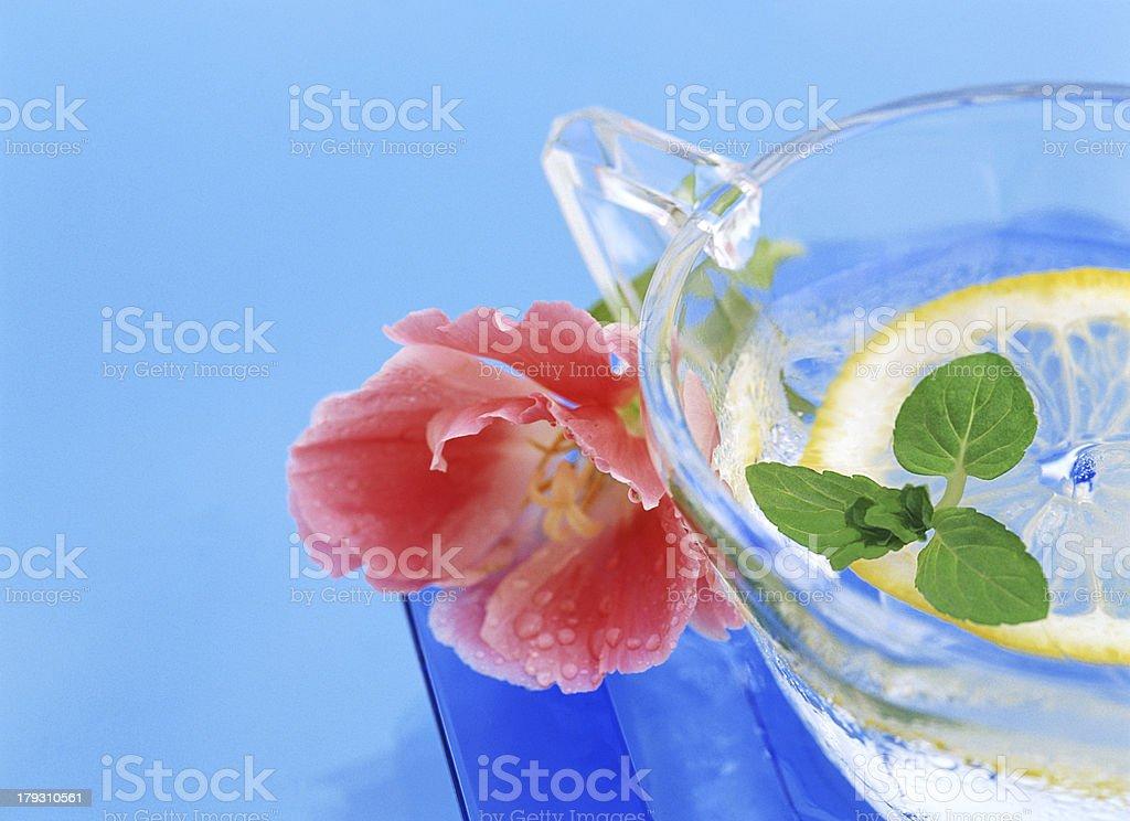 herbal tea royalty-free stock photo