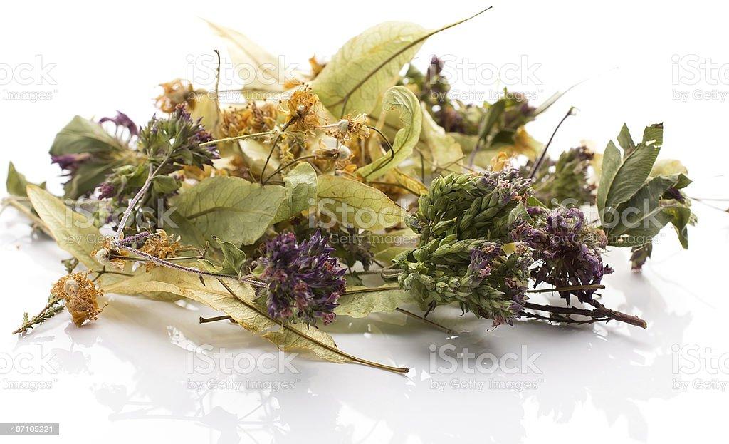 Herbal tea. royalty-free stock photo
