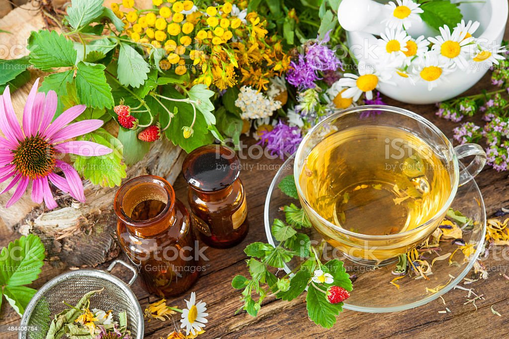 Herbal tea Cup of herbal tea with wild flowers and various herbs 2015 Stock Photo