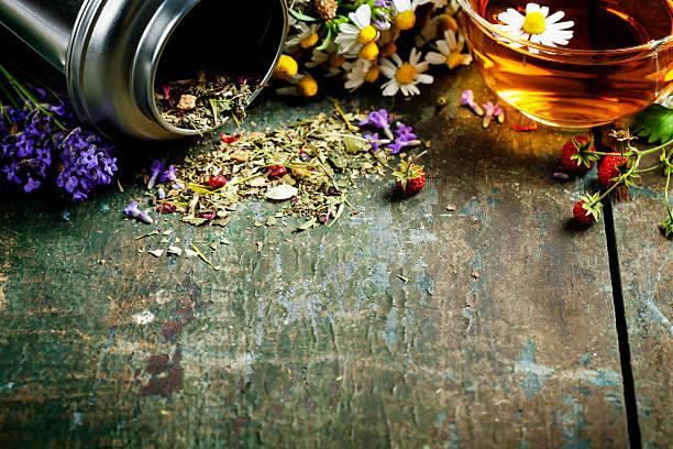 kräutertee tea - grüner tee koffein stock-fotos und bilder