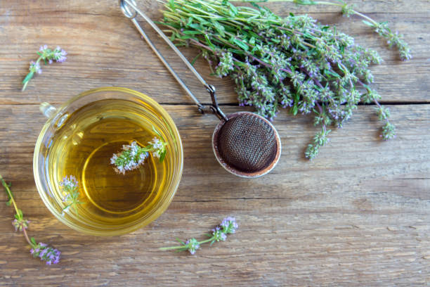 herbal tea - thyme stock photos and pictures