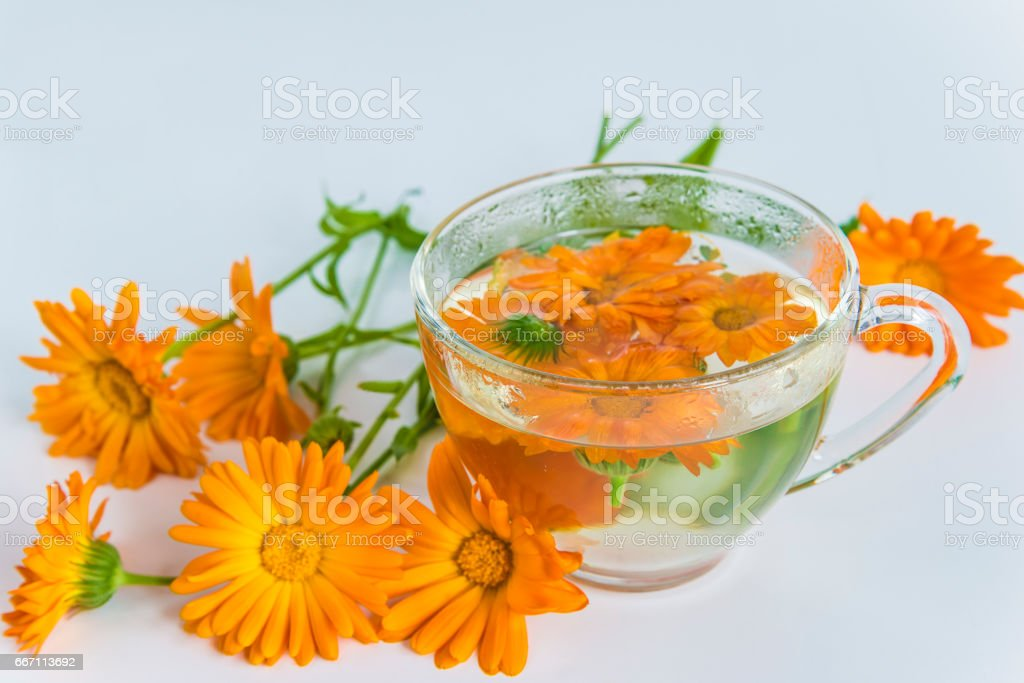 herbal tea with calendula - foto stock