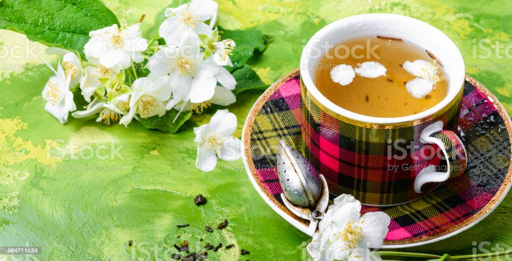 Herbal tea with jasmine royalty-free stock photo