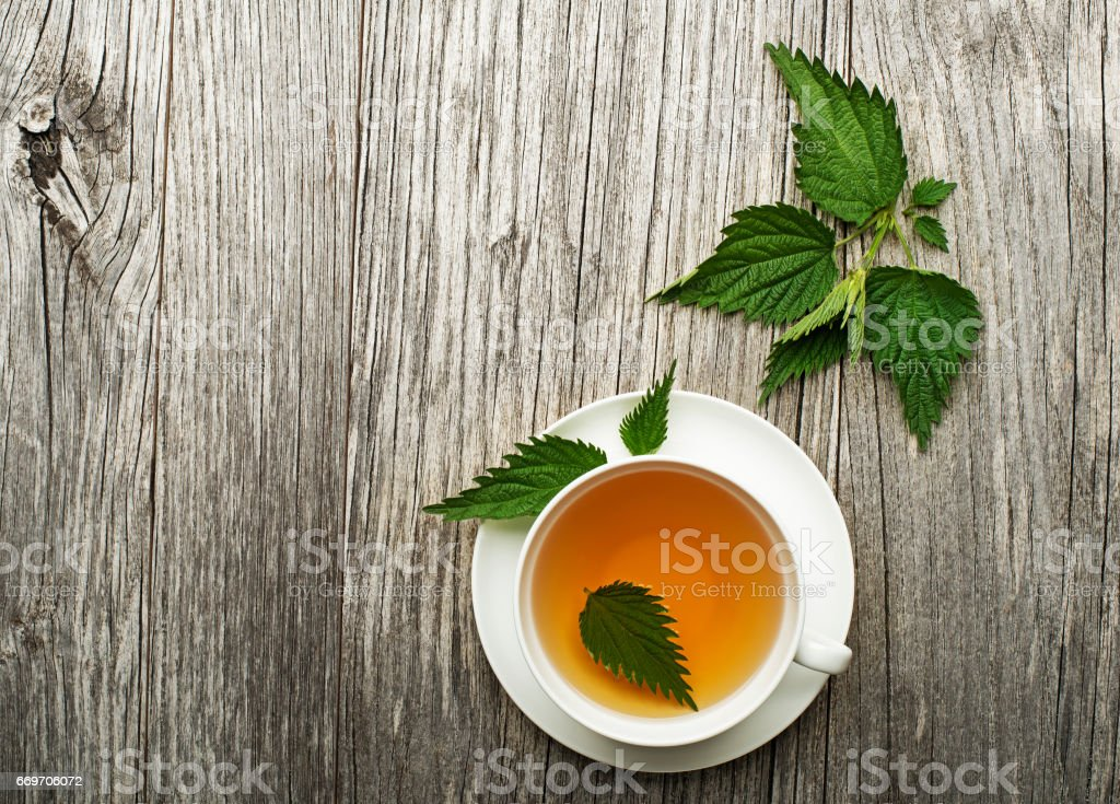 herbal tea with nettle stock photo