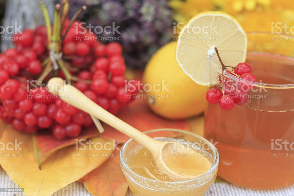 Herbal tea with viburnum berries and honey royalty-free stock photo