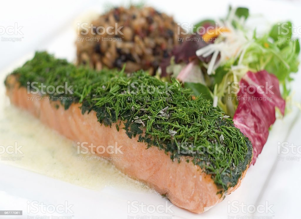 Herbed Salmon stock photo