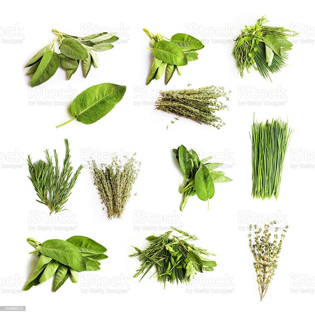 Herbes – Foto