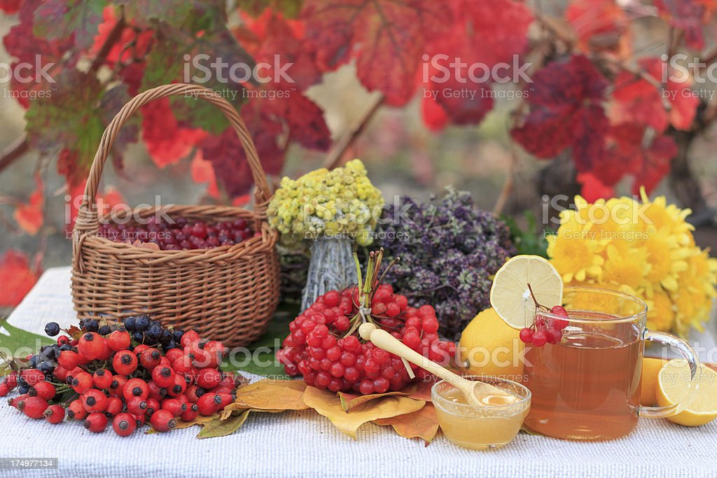 Herbs and berries, hot tea in glass, some lemon outdoors royalty-free stock photo