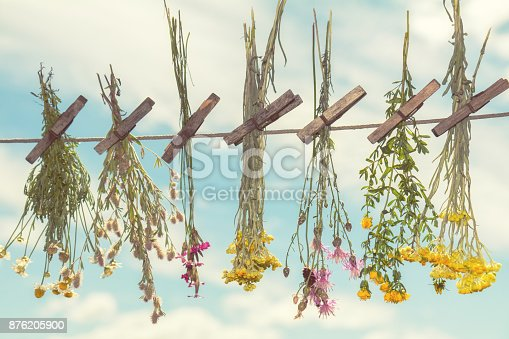 Herbs Dried In The Shade On A Rope Stock Photo & More Pictures of Arid Climate