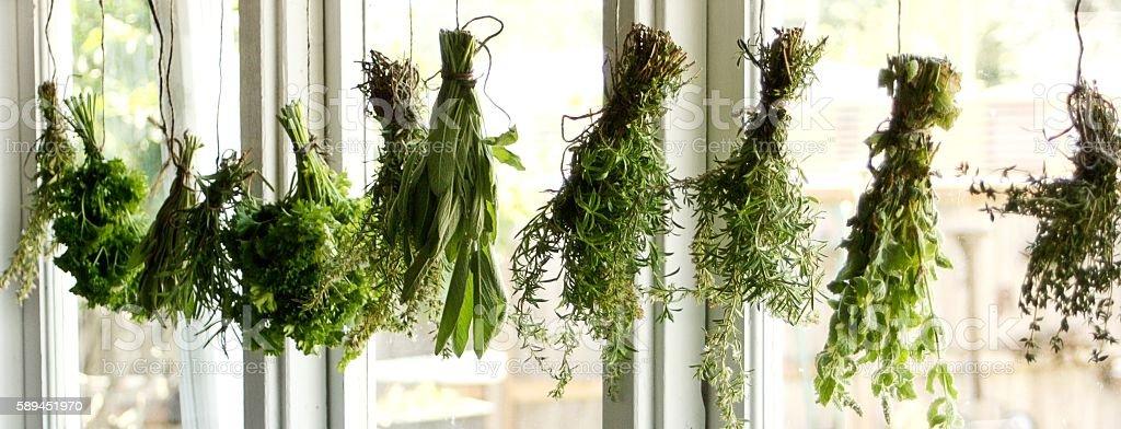 Herbs Drying stock photo