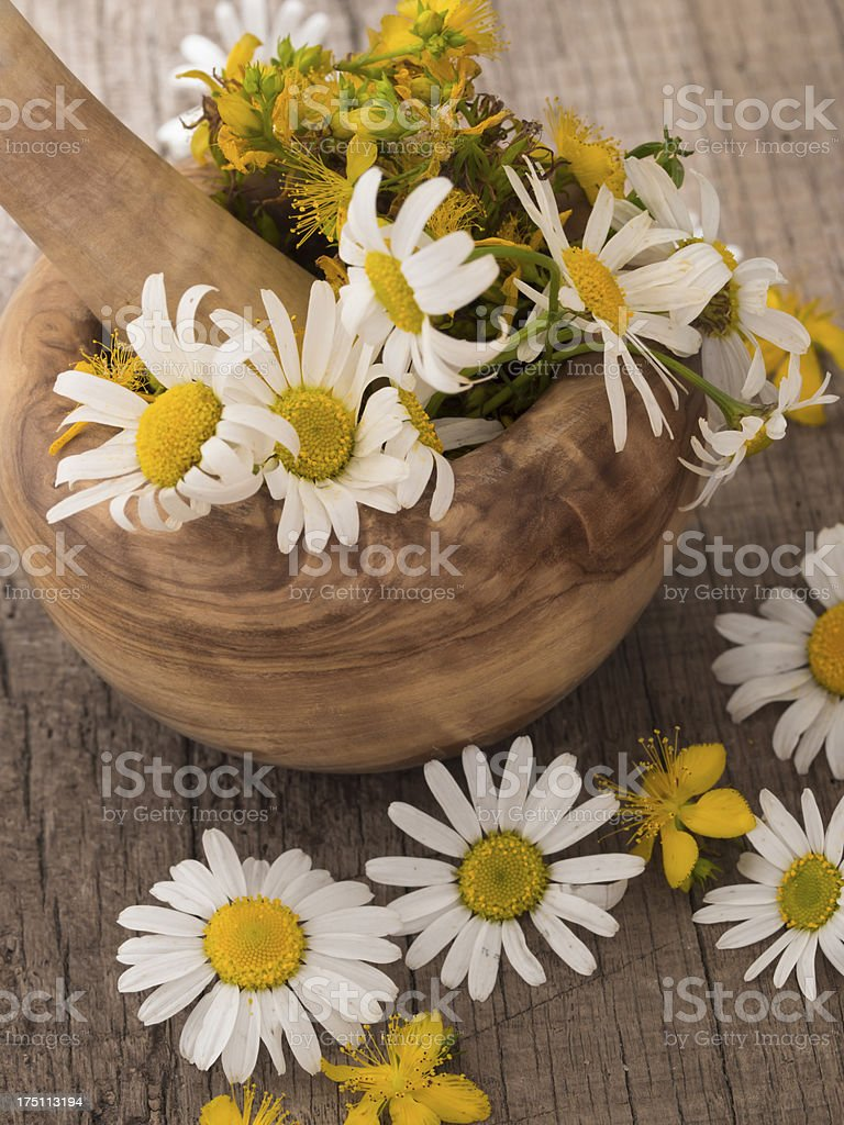 herbs in the mortar royalty-free stock photo