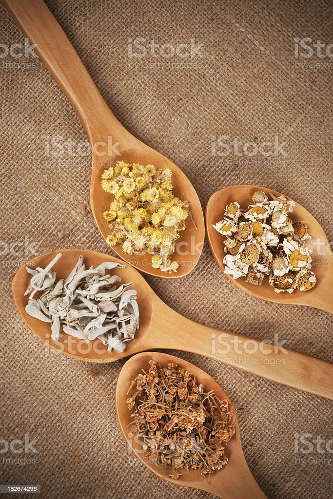 Herbs in wooden spoons royalty-free stock photo