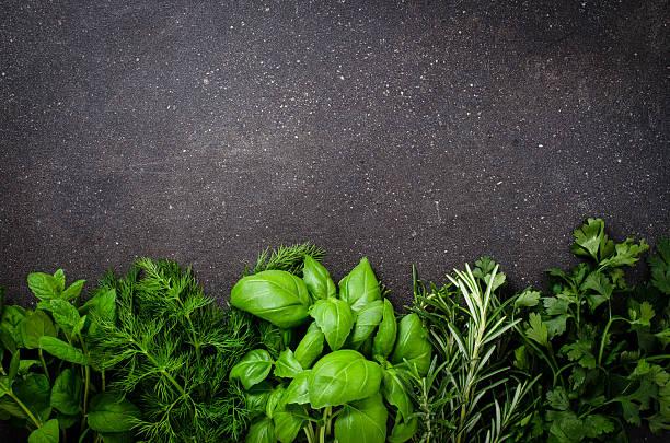zioła na ciemnym tle - liść mięty przyprawa zdjęcia i obrazy z banku zdjęć