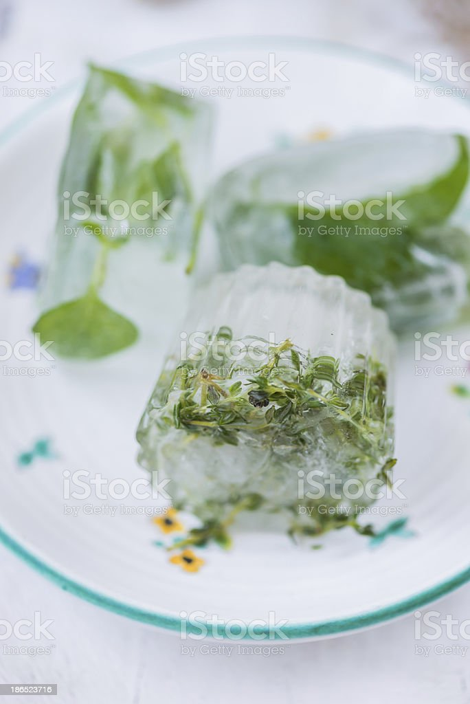 Herbs On Ice royalty-free stock photo
