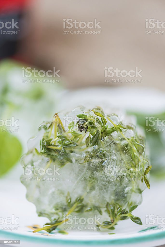 Herbs On Ice royalty-free stock photo