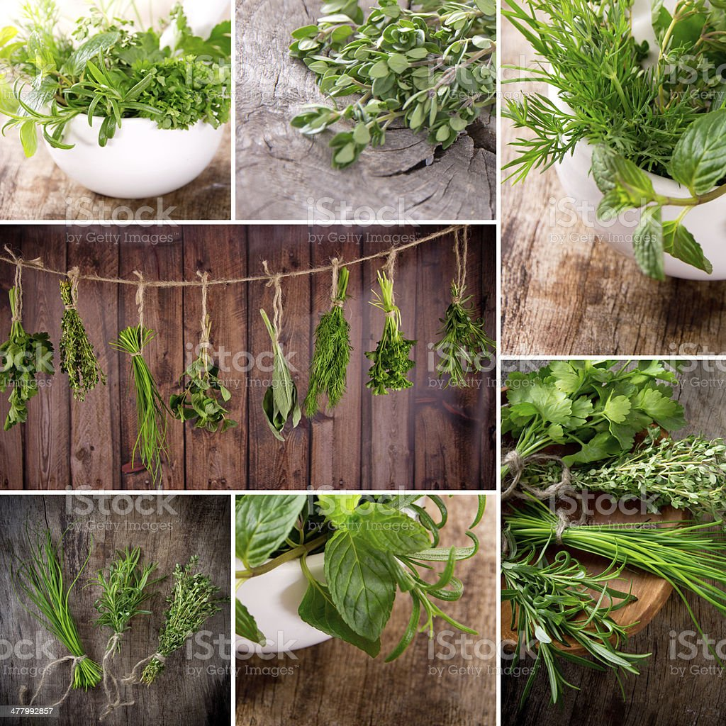 Herbs on wooden table royalty-free stock photo