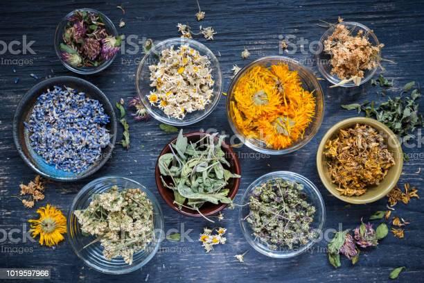 Photo of Herbs